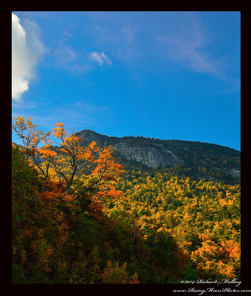 Slopes Of Grandfather Mountain NC