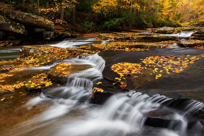 MIll Creek 9886