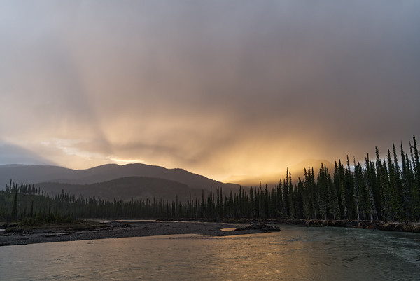 Toad River Rays