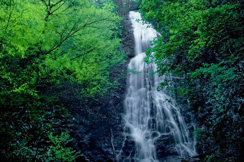 Mingo Falls In Spring