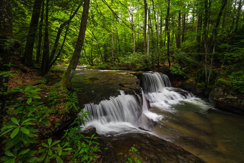 Lower Falls HR 1264