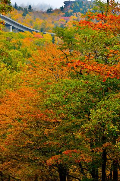 Slopes Of Grandfather Mountain North Carolina
