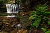 Elakala Falls 9039