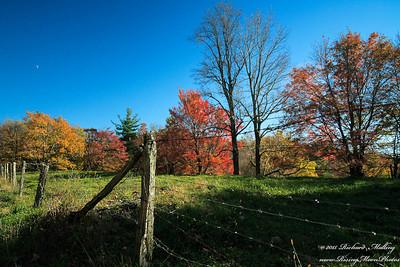 Fall Along The Blue Ridge NC 2015