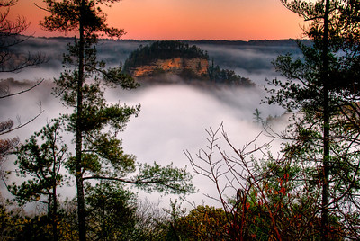 Sunrise through the Trees Red River Gorge Kentucky