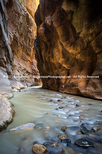 Virgin River and Narrows