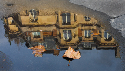 Paris Puddle Reflection with Leaves, 2013