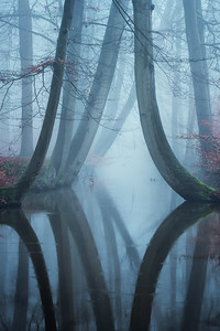 The bent ones in thick fog