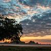 Sunrise through the trees at Malvern Hill