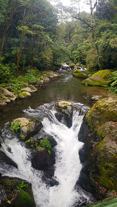 Savegre -Costa Rica  Clean River