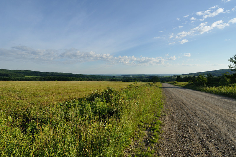 On the State Road above Dalton, NY, looking north at sunrise.  Nikon D5000 (July 2009).