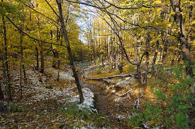 A River Ramble