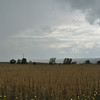A rainstorm sweeps eastward across the Genesee Valley.  Between Nunda and Mount Morris, NY.  Nikon D5000 (2009).