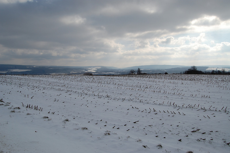 On Oak Hill near Nunda, NY, looking toward Chautauqua Hollow and the Swains ski slope.  Nikon D40 (2007).