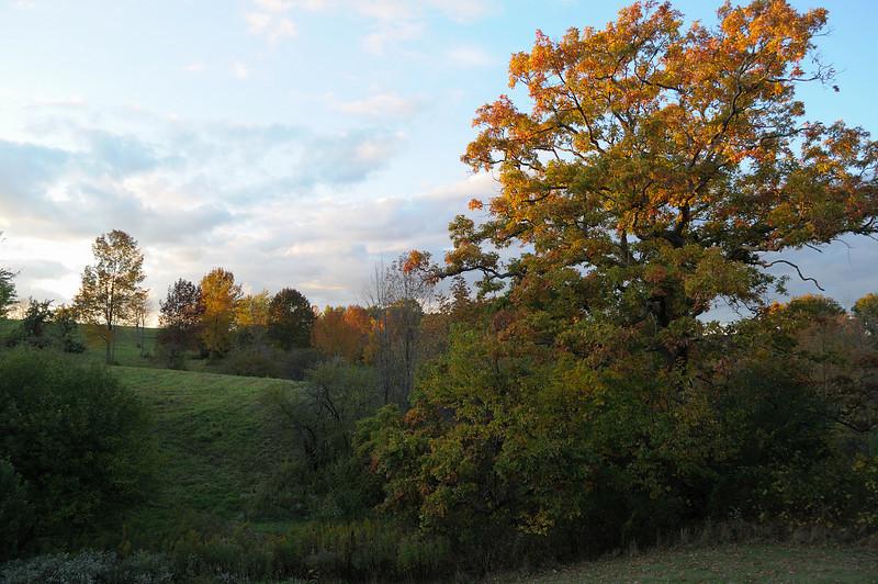 Sunset near Avon, NY.  Nikon D5000 (2009).