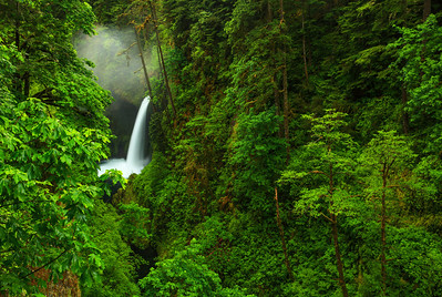 Metlako Falls Columbia River Gorge, Oregon