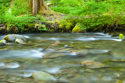 Sol Duc River. Soft water flow Olympic National Park Wa.