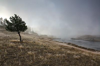 Geyser Fog
