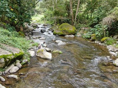 Savegre pristine river with rocks in the forest in Costa Rica