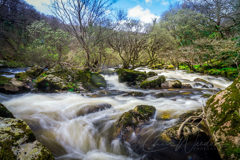 dartmoor apr2014-164.jpg