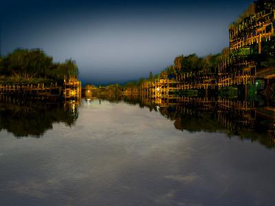 Bayou Nightfall