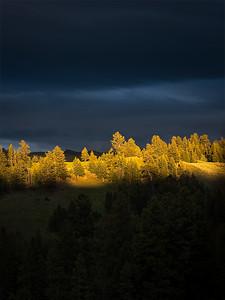 Sunshine Storm