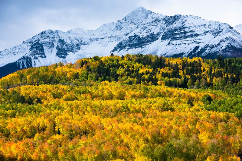 Wilson Peak Colors
