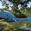 Catoosa, cet endroit était une piscine publique, maintenant ce sont les tortues qui peuplent les eaux.