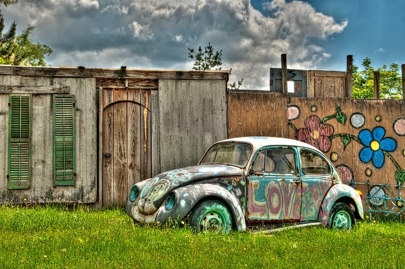 Hippie Bug