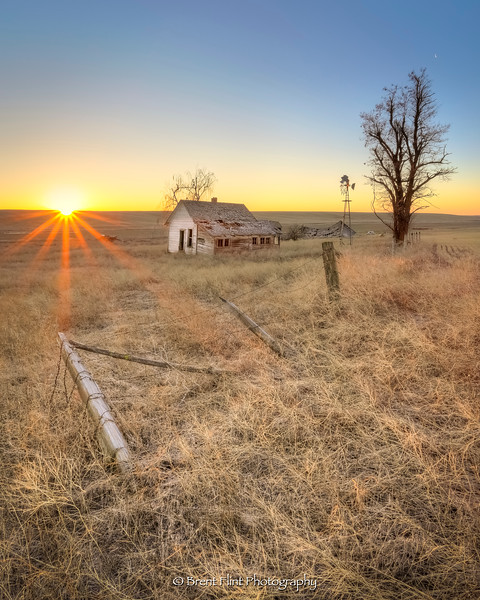 DF.4485 - sunrise and moonset at old farmstead, Lincoln County, WA.