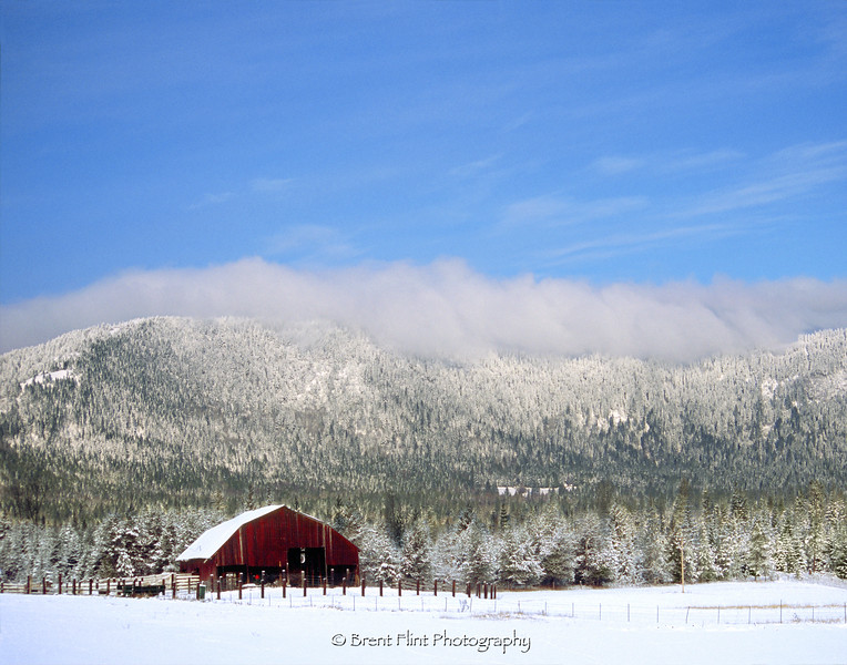 DF.348 - snow and barn, Blacktail Road, Bonner County, ID.