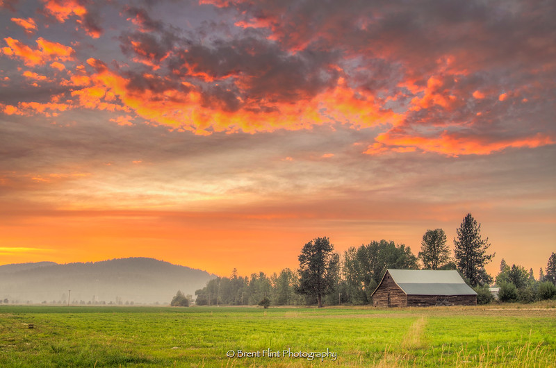 DF.4016 - barn in Blanchard, ID. at sunset