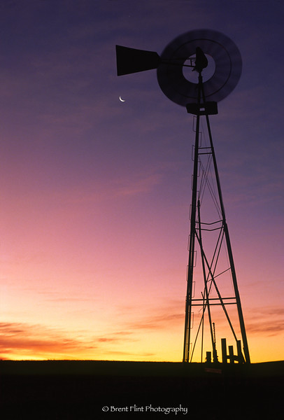 S.1080 - windmill at sunrise, Elbert County, CO.