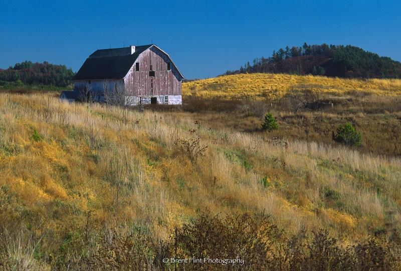 S.2610 - barn in field, near Northfield, WI.