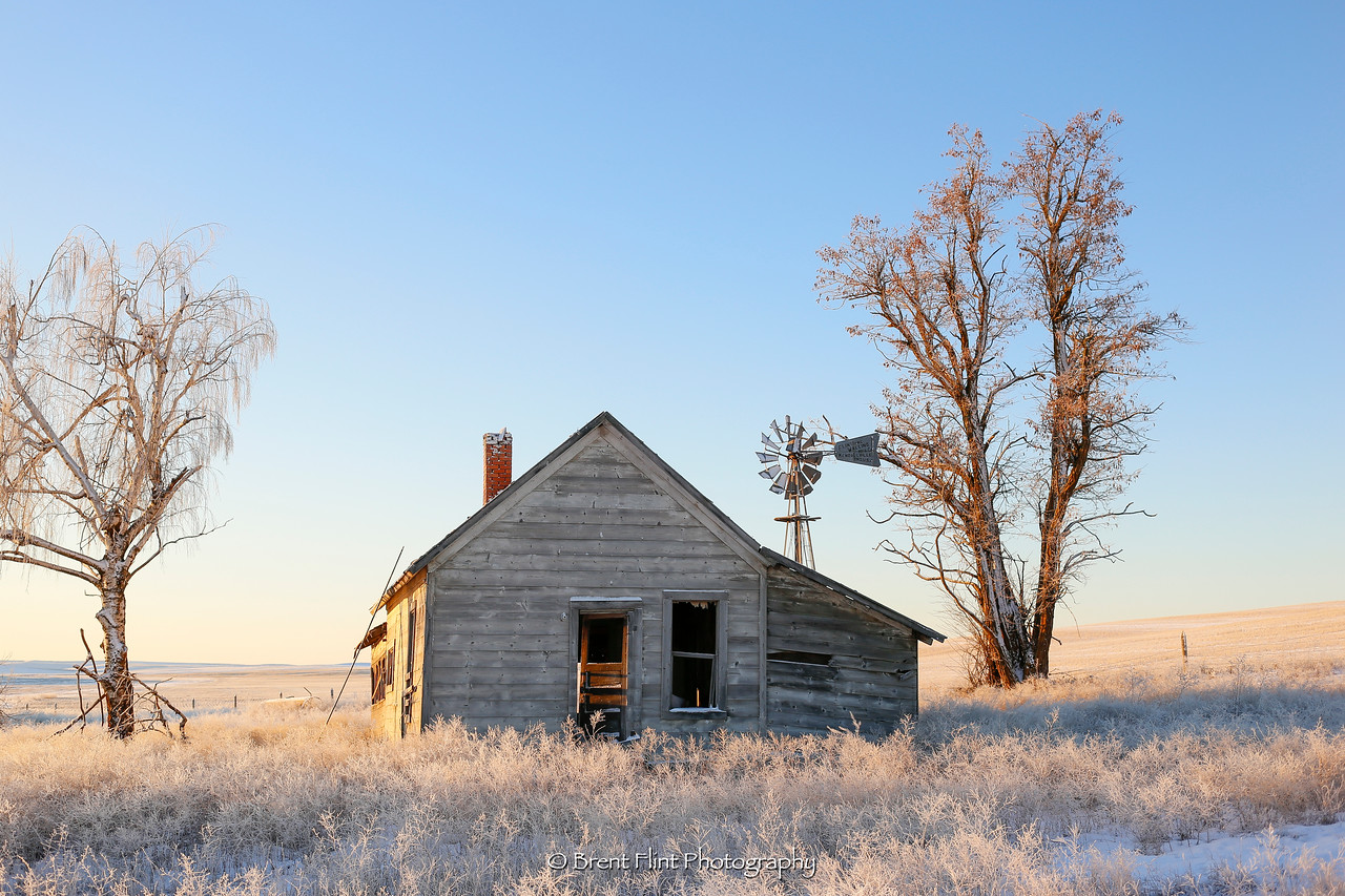 DF.4436 - old farmhouse with frost, Lincoln County, WA.