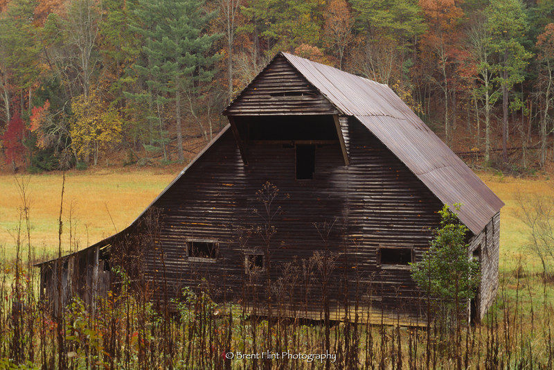 S.3130 - old barn in Cades Cove, Great Smoky Mountains National Park, TN.