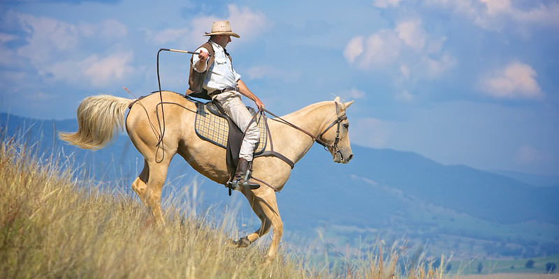 But the man from Snowy River let the pony have his head,<br />     And he swung his stockwhip round and gave a cheer,<br />    And he raced him down the mountain like a torrent down its bed,<br />     While the others stood and watched in very fear.<br /> ~ WIDE VIEW