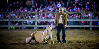 Night Entertainment at the 2013 Man From Snowy River Bush Festival