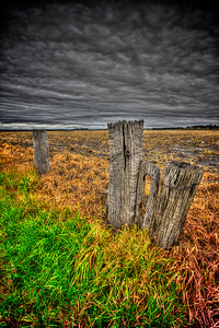 The Old Fencepost 4