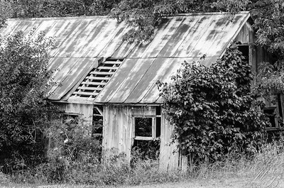 Old Barn Port William, OH