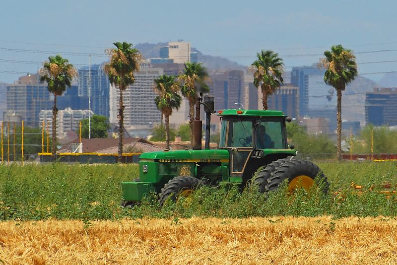 Rural vs Urban: Phoenix Skyline