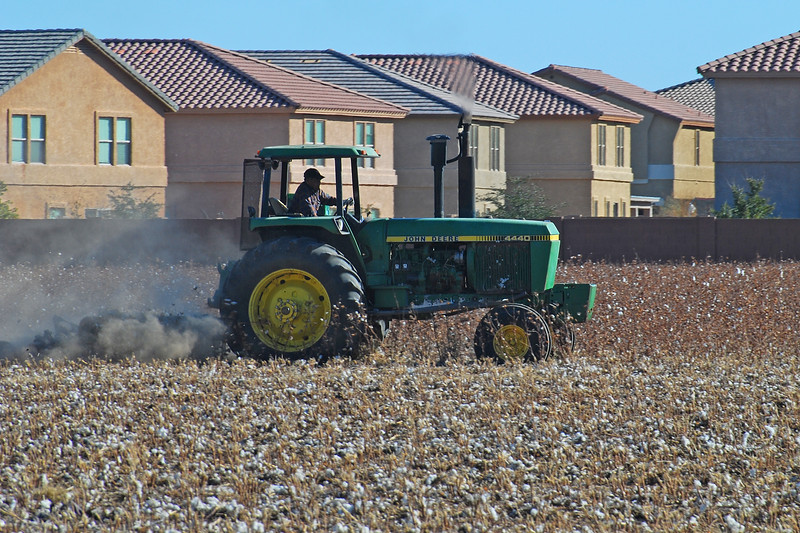 Rural vs Urban: Plowing Cotton Field<br /> Phoenix, Arizona