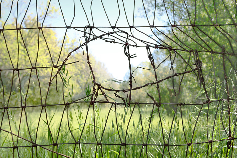 Barbed wire repair
