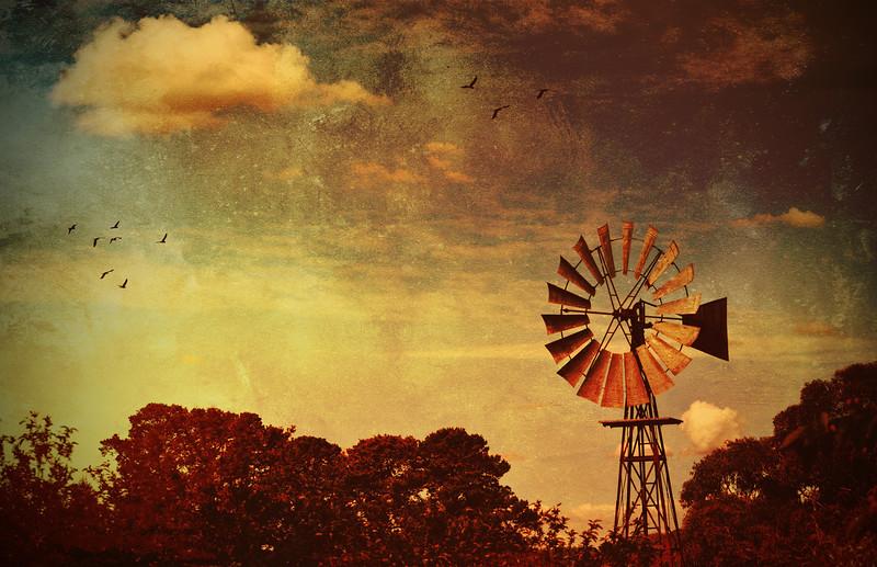 Rustic Windmill II