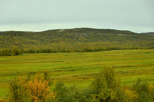 Cultivated area on Kola