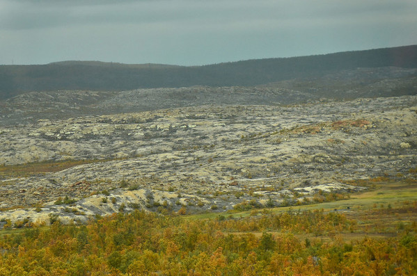 Nikel's sulfur acid rain causes an Arctic desert