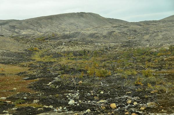 Dead tundra, Nikel - Zapolyarnyy area