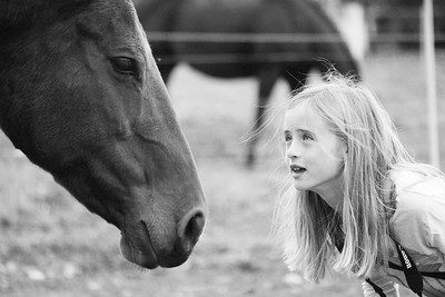 This is a great image.  It effectively uses a narrow depth of field to capture a neat moment between the girl and the horse.  Nice work.