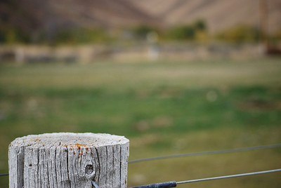 This is one of my favorite fence post photos from our horse photo session.  In a zoomed image like this, there is a natural narrowing of the depth of field right off the bat so sometimes it is better to use a mid-range aperture setting (f 8 to f 14) which will get more of your fence post in focus while still blurring the background.