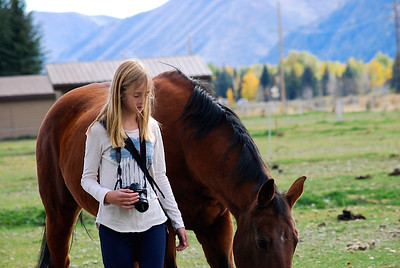Narrow depth of field helps isolate subject.  I kind of want to know what both the horse and person are looking at...?